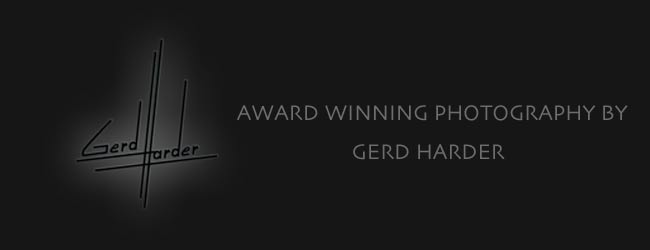 award winning senior portrait photography in melbourne florida by gerd harder